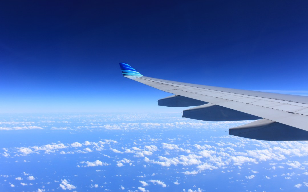 wing-221526.jpg